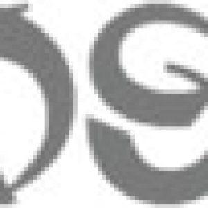 logo hooseki